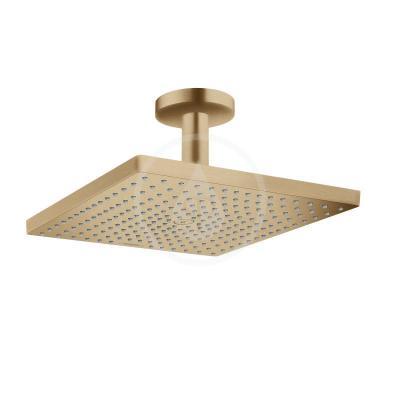 Horní sprcha E 300, 1jet, kartáčovaný bronz