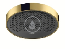 Hlavová sprcha 250, EcoSmart, leštěný vzhled zlata